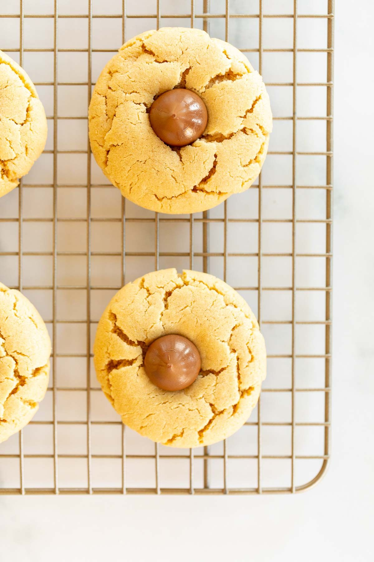 Freshly baked peanut butter blossom cookies on a metal cooling rack.