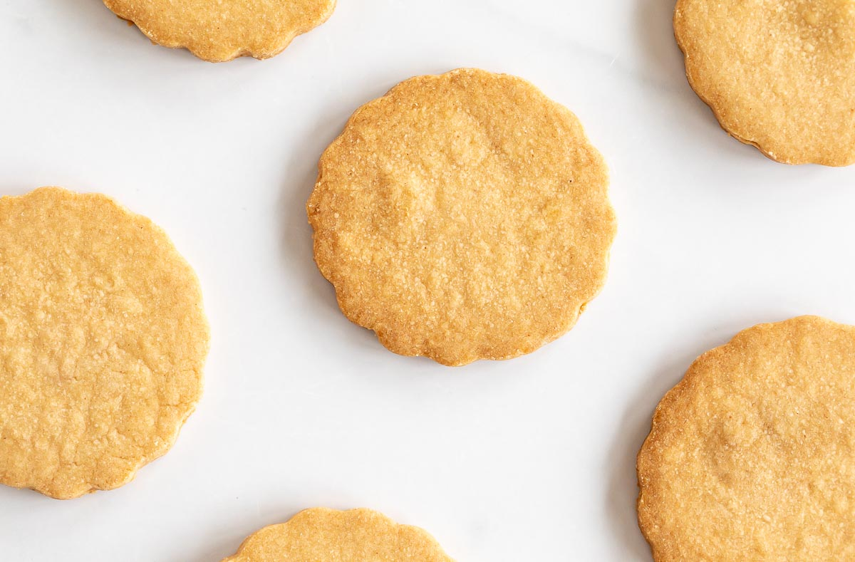 peanut butter shortbread cookie on white background