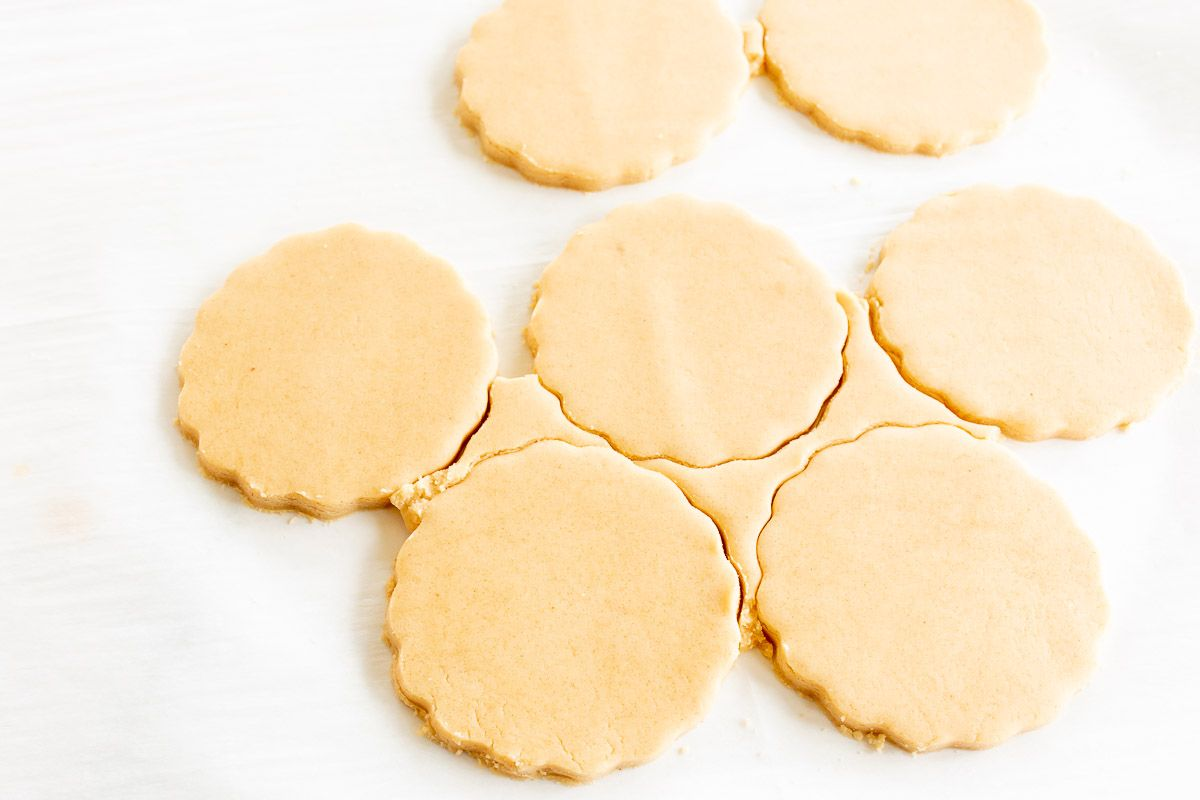 A flat chunk of peanut butter shortbread cookie dough on a sheet of parchment, cut into circles for baking.